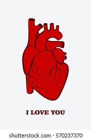 Valentine's day greeting card. Human heart. Inscription I love you . Vector illustration