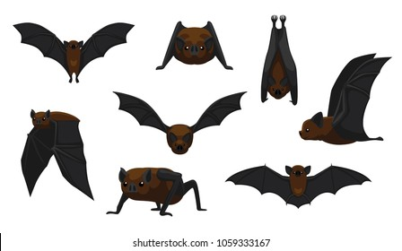 Vampire Bat Flying Cartoon Vector Illustration