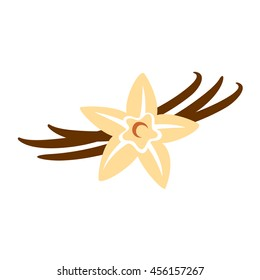 Vanilla flower with pods color silhouette illustration
