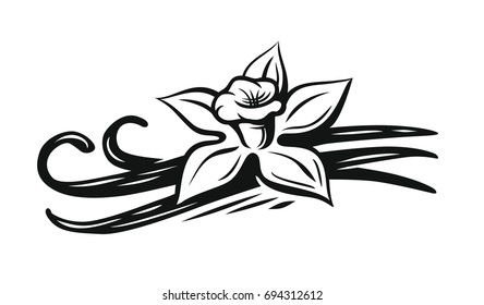 Vanilla flower vector black on white background