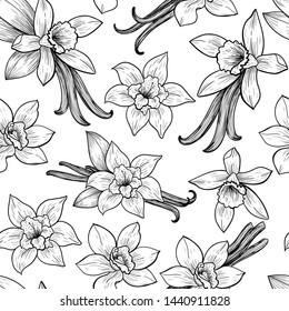 Vanilla flowers and pods. Vector seamless pattern. Vintage style