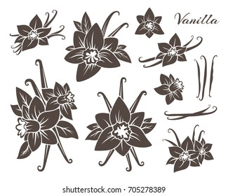 Vanilla icons collection. Flowers with dried pods. Monochrome version