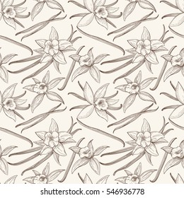 Vanilla stick and flower vector hand drawn seamless pattern. Flavor vanilla blossom illustration