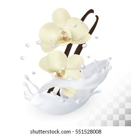 Vanilla sticks with flowers in a milk splash on a transparent background. Vector icon.