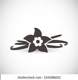Vanilla vector icon