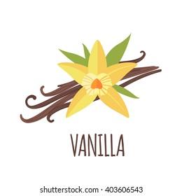 Vanilla vector logo  in flat style. Vanilla icon. Isolated object. Vector illustration.