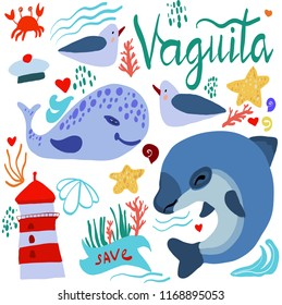vaquita marina vector illustration