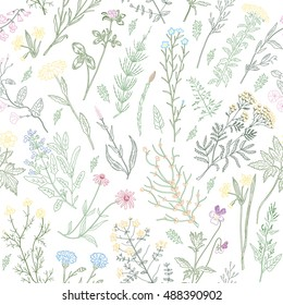 variegated herbs and flowers