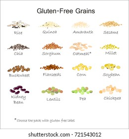 A variety of gluten free grains. Buckwheat, amaranth, rice, millet, sorghum, quinoa, chia seeds, flax seeds, sesame, oatmeal, legumes. Vector isolated on white