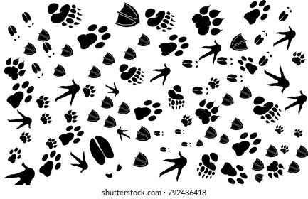 Various Animal Footprint Wallpaper texture, Deer foot, Swan,  Tiger, Chicken print, Dog foot print vector
