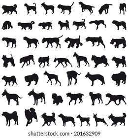 Various breeds many dogs black silhouettes
