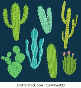 Various cactus plants in different shapes and shades of green.