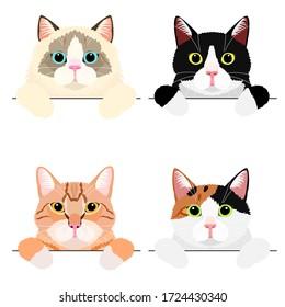 various cute cat banner set