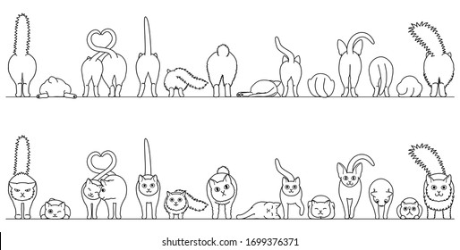 various cute cats border in a row, front view and rear view