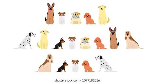various dogs border set2