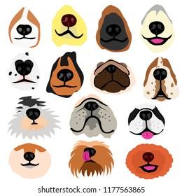 various dogs nose part set
