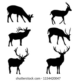 Various forms of deer silhouettes