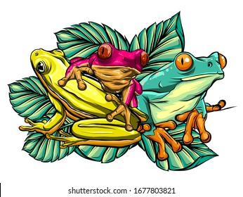 Various Frogs Cartoon Vector Illustration design art
