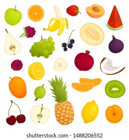 Various fruits. Vector illustration in cartoon style. Assorted whole, halves and sliced fruits.