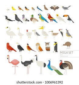 various kind of birds mega set icons geometric vector illustration flat design