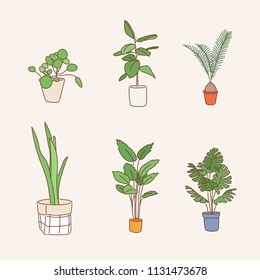 various kind of plant pots. hand drawn style vector design illustrations.