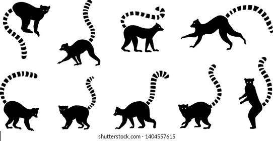 various lemur silhouette on the white background