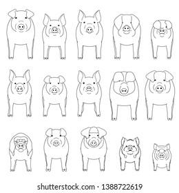 various pig line art set