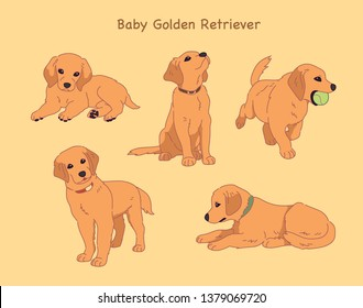 Golden Retriever Line Drawing Images Stock Photos Vectors