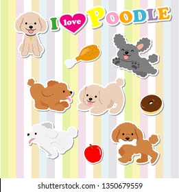 Various poses of cute toy poodle1