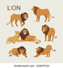 Various poses of a lion vector illustration