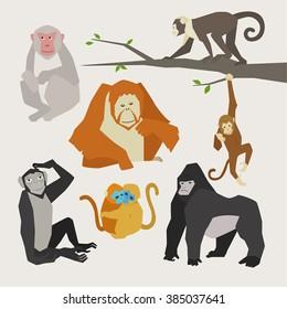 Various poses of monkeys