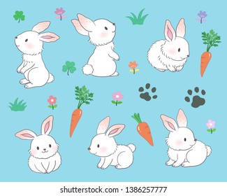 Various poses of white bunny
