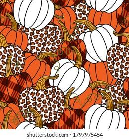 Various pumpkins. Leopard, orange, white and buffalo plaid pumpkin.Vector seamless pattern. Harvest season.  Farmhouse Decor.