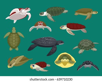 Various Sea Turtle Poses Vector Illustration