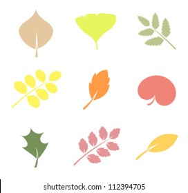Various shapes of leaves - vector illustration