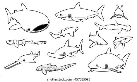 Various Sharks Cartoon Vector Illustration Monochrome 2