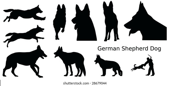 various silhouettes of a German Shepherd Dog, vector illustration
