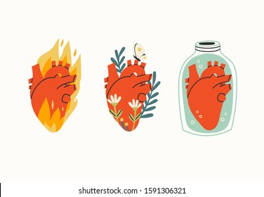 Various three Anatomical hearts. Heart on fire, flowers, butterfly, heart in a jar. Cartoon style. Hand drawn colored set. Trendy vector illustration. All elements are isolated