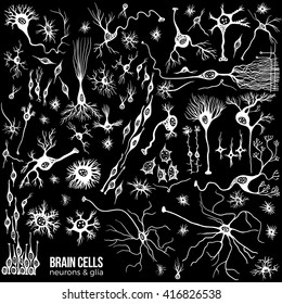 Various types of brain cells, doodle background for your science, medicine or education-related design.