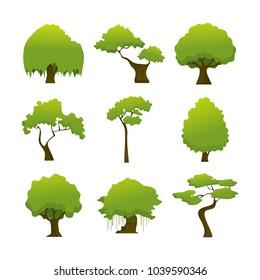 Various Wild Isolated Tree Plant Illustration Set