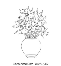 Vase of flowers. Narcissus daffodil flowerpot. Isolated spring bouquet outline. Black and white vector illustration.