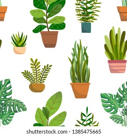 Veclor seamless pattern with house indoor plants on white background. Flat colorful vector illustration