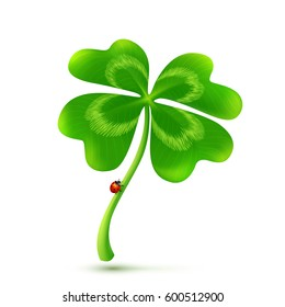 Vector 3D four-leaf clover isolated on white background