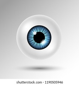 Vector 3d human eyeball with blue iris and shadow isolated on white background