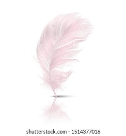 Vector 3d Realistic Falling Pink Flamingo Fluffy Twirled Feather with Reflection Closeup Isolated on White Background. Design Template, Clipart of Angel or Detailed Bird Quill