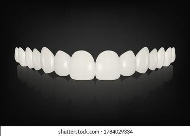 Vector 3d Realistic Render White Denture Set Closeup Isolated. Dentistry and Orthodontics Design. Human Teeth for Medical and Toothpaste Concept. Healthy Oral Hygiene, Jaw Prosthesis, Veneers