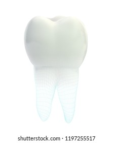 vector 3d tooth for dental medicine.volume polygonal mesh, printing on a 3D printer. isolated on a white background