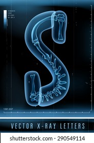 Vector 3D X-ray transparent alphabet use in logo or text. Letter S