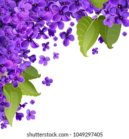 Vector abstract background of lilac flowers. A white square leaf from one corner is filled with leaves and small flowers of lilac.
