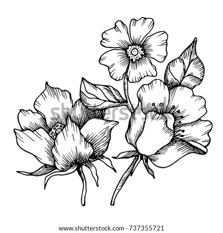 cacl2 solution coloring pages | Vector Abstract Flowers Blackandwhite Solution Drawn Stock ...
